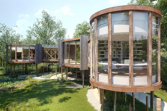 В Великобритании построят инновационный «дом на дереве» за $2,5 млн