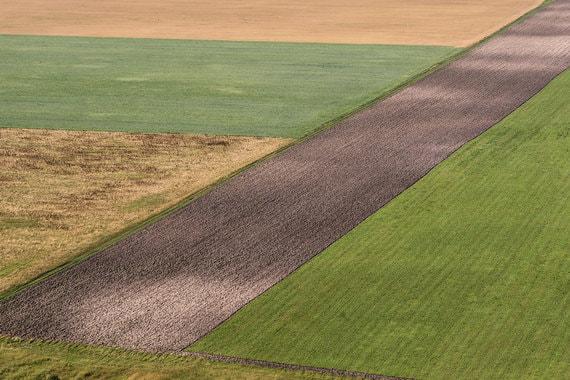 Российские сельскохозяйственные земли начали дешеветь