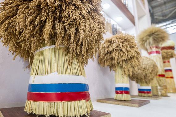 Сегодня основная позиция в российском агроэкспорте – сырье, а именно зерно
