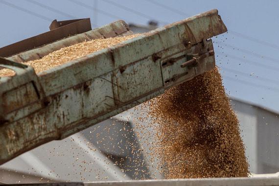 normal 1rqi Государство будет контролировать 25% перевалочных зерновых мощностей