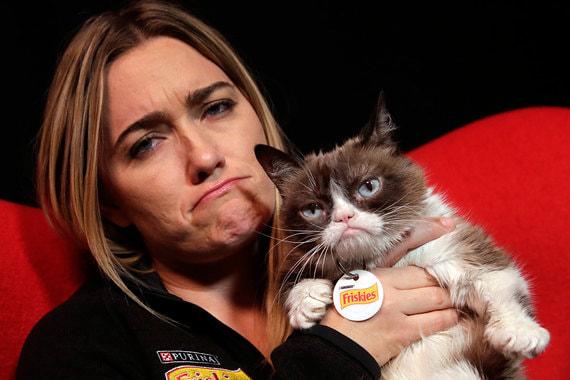 normal xw Grumpy Cat: как жила и зарабатывала самая сердитая кошка в мире