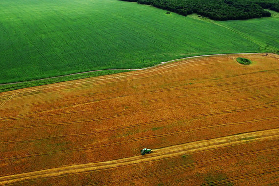 normal 16gl Крупный китайский холдинг вложит почти 10 млрд рублей в российское сельское хозяйство