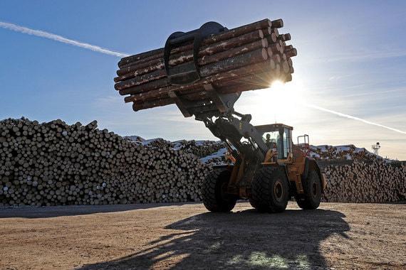 normal 1r1n Компания Глеба Франка поможет ВЭБу построить лесохимический комбинат за 140 млрд рублей