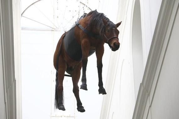 normal 1rn8 Зачем в ГМИИ им. Пушкина лошадь висит