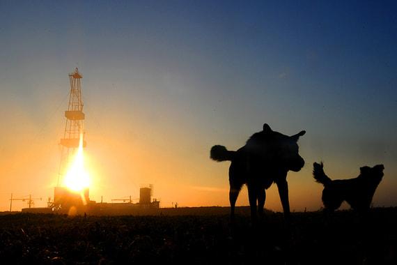 normal 13xm Белоруссия хотела бы больше получать за транзит российской нефти