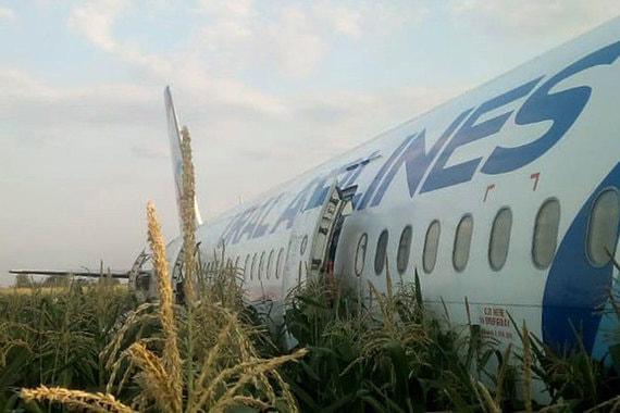 Самолет Airbus А-321 совершил аварийную посадку рядом с «Жуковским»