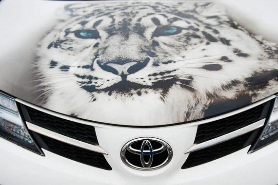 Toyota Suzuki обменяются пакетами акций
