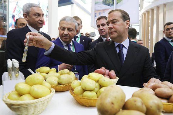 normal 19xf Медведев осмотрел достижения народного хозяйства. Фоторепортаж с выставки «Золотая осень»
