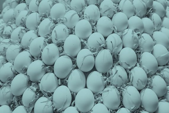 Куда ведет борьба за чистоту куриных яиц