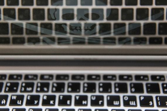 Интернет-пираты потеряли четверть российского рынка