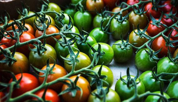 В России разработаны стандарты для улучшенных продуктов питания