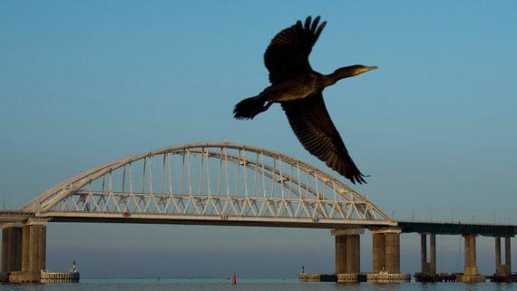 Власти начинают строительство трассы из Краснодара к Крымскому мосту