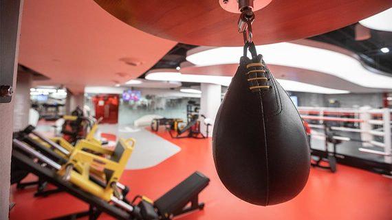 Крупнейшие компании фитнес-индустрии России просят правительство помочь