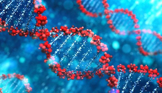 Путин предложил создать национальную базу генетических данных россиян