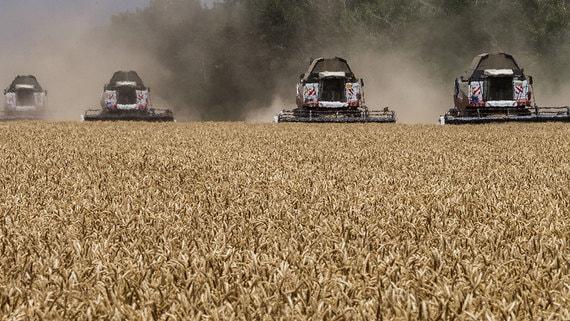 Минсельхоз решил бороться с манипуляциями экспортеров зерна