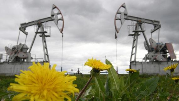 Россия готова поддержать плановый рост добычи в ОПЕК+