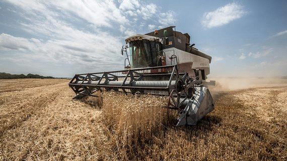 normal 15ox Россия планирует ограничить экспорт зерна