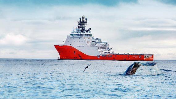 «Газпром нефть» готова пойти с Shell в разведку