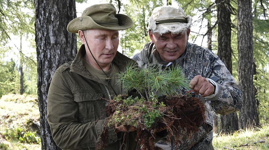 Путин второй раз за год поехал на отдых в тайгу с Шойгу - Ведомости