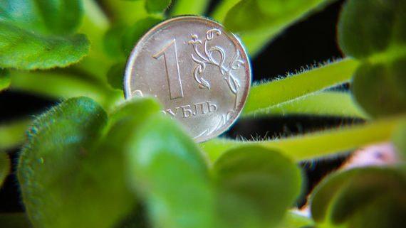 В правительстве разошлись во взглядах на стимулы для зеленого финансирования
